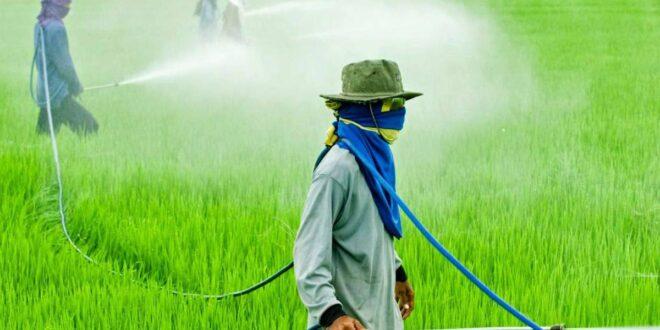 Glifosato, el herbicida más importante y seguro para la agricultura en México: Enrique Rosales Robles