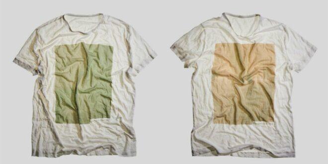 Ropa hecha con algas; la moda del futuro